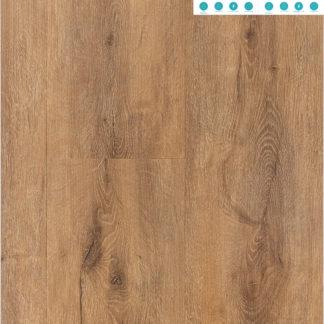 Tiger Oak