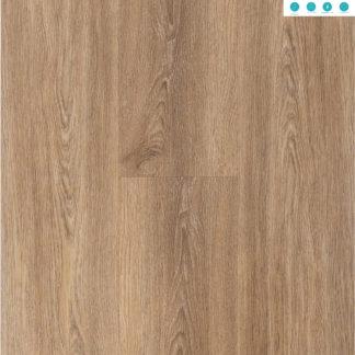 Tiramisu Oak